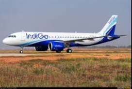 Airlines Hiring for staff vacancy for full time job apply fast this is