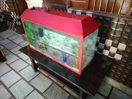 Fish akovariyam