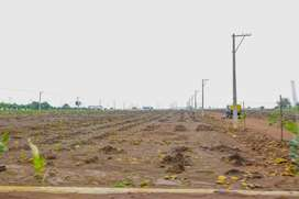 Rs.8999 per sqyds farm land plots at shankarpally with LRS approved