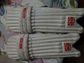 Kit Bag and Cricket Pads