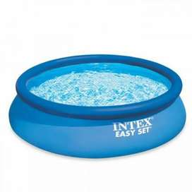 Intex 28120 (size:10ft/2.5ft) AGP easyset pool for summer fun.
