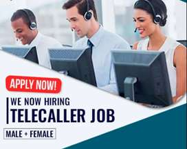 We need only female & male both telecallers to work from home