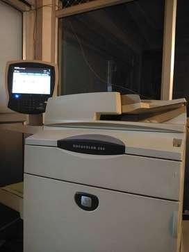 Xerox DC 250 13X19 Printer