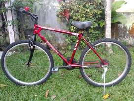 Sepeda Federal Bekas