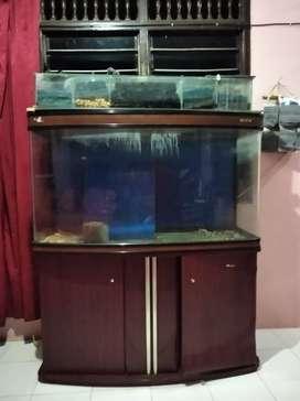 Jual aquarium merk