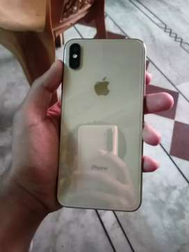 Xsmax 256 gold color