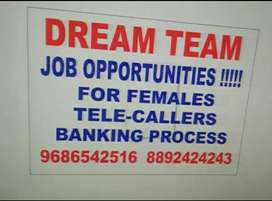 Dream Team job opportunity