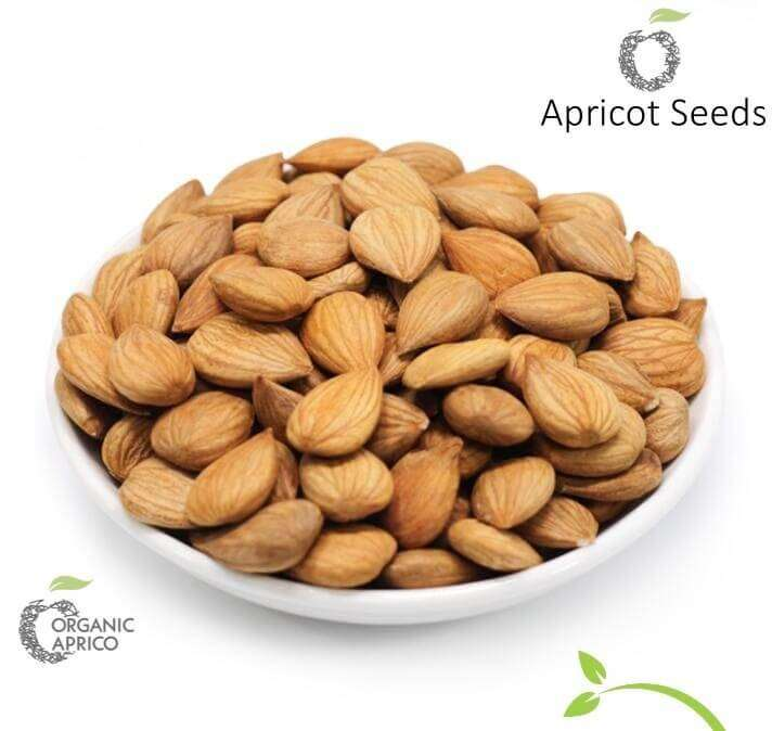 Mighty Organic Apricot Kernels 0