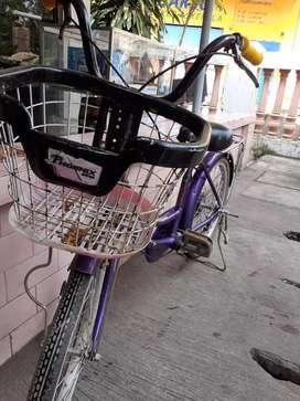 Sepeda uk 20 phonik