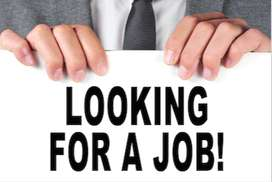 Part Time work opportunity in M.C.A approved company.