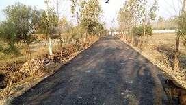 hariyali plot and farms