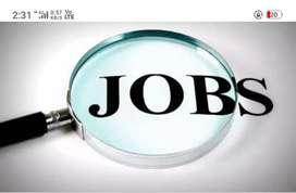 Job for girls