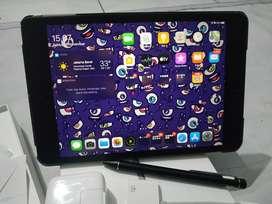 Ipad mini 5 Space Gray 64Gb Wifi Only + Banyak Aksesorisnya bos!