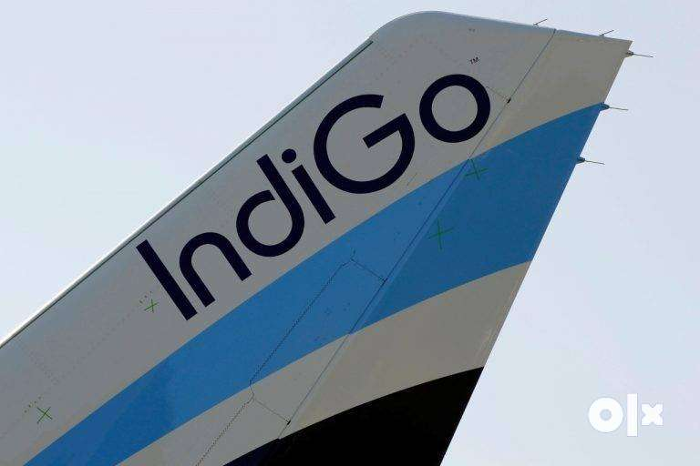 Open interview for ground staff and air-ticketing indigo airlines 0