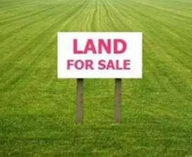 1 bigha Non belt land for sale