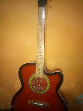 Guitar with cover and pick