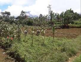 Tanah seberang GSI Sukabumi cocok utk kost/kontrakan (390rb/m2)