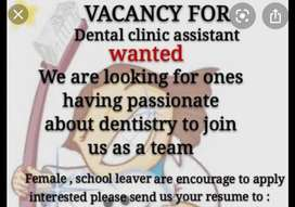 Assistant needed for dental clinic