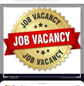 Need a privet secratary lady for startup company