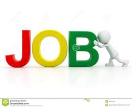 We are Hiring for Ground Staff and Passport checker