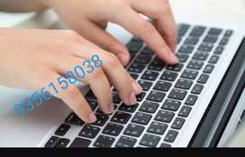 Data entry work at your typing job