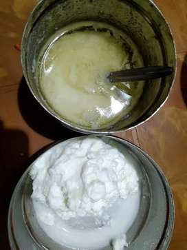 Home made ghee and butter