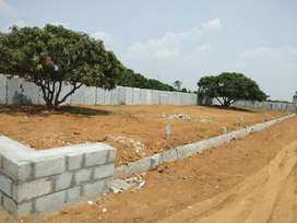 LIMITED PLOTS AVAILABLE FOR SALE