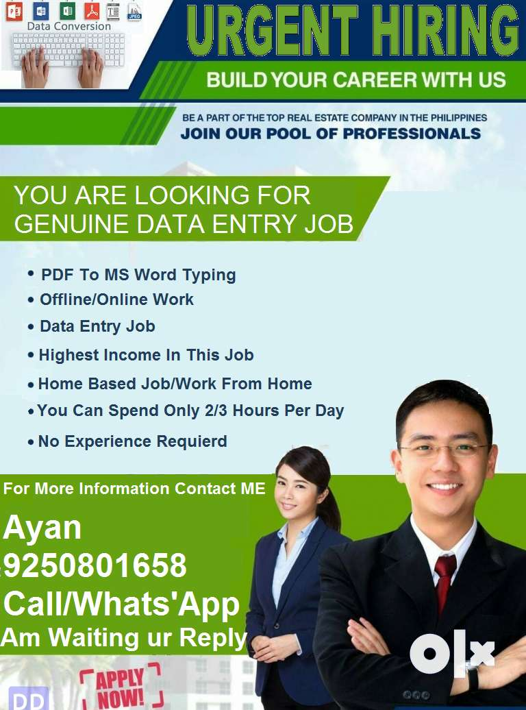 Wanted DATA ENTRY operator for home based job offline based working 0