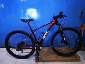 BMC TeamElite TE 01 29er