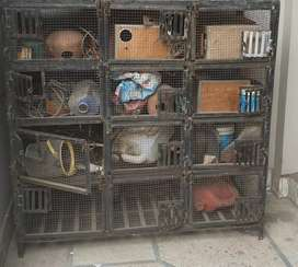12 portion cage for sale in lahore