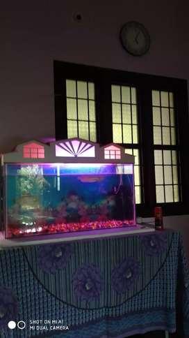 Fish tanksale 2 fish tank 2 filter 1automatic food feeder