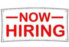 Need passionate candidates for Travel Company.