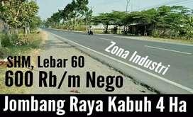 Dijual Tanah di Jombang