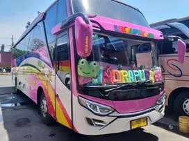 Big bus hino r260 tahun 2012 hdd