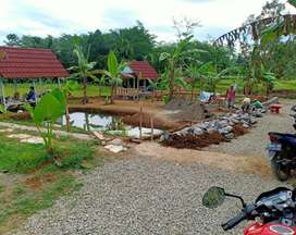 Tanah kolam dan kebun murah