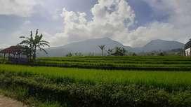 Tanah sawah pemandangan gunung tangkuban perahu dan kota bandung
