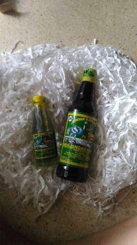 Jual Minyak Kayu Putih Asli Ambon Cap Manjangan Kasuari