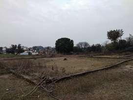 20 marlas plot ( 3 kms from highway) towards birpur