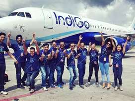 Urgent hiring for airlines indigo company hiring for ground staff.male