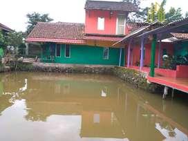 Rumah dengan tanah yg luas ada kolam ikan dii Subang