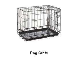Dog creat ...