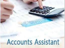 Accounts Assistant(GST)