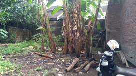 Tanah di kecamatan Kedaung Cirebon