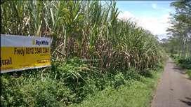 Tanah di Wagir Wadung Pakisaji Malang 17.530 m2 NEGO