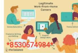 Freshers / experience back office/ customer care executive needed