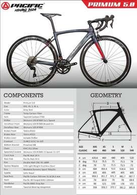 Sepeda roadbike premium pasific 5.0