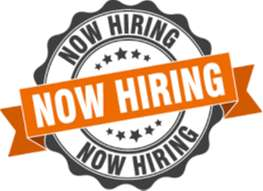 Hiring Freshers for Backend Accounts Operations - 93197O1710
