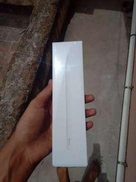 iPad( ipencil)