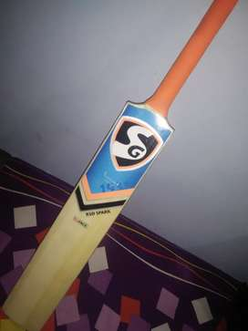 Cricket bat SG Company