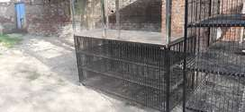 chiken table or counter